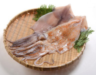 ICHIYABOSHI SQUID (SALTED AND DRIED)